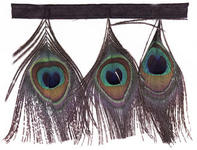 Peacock Eye Fringe